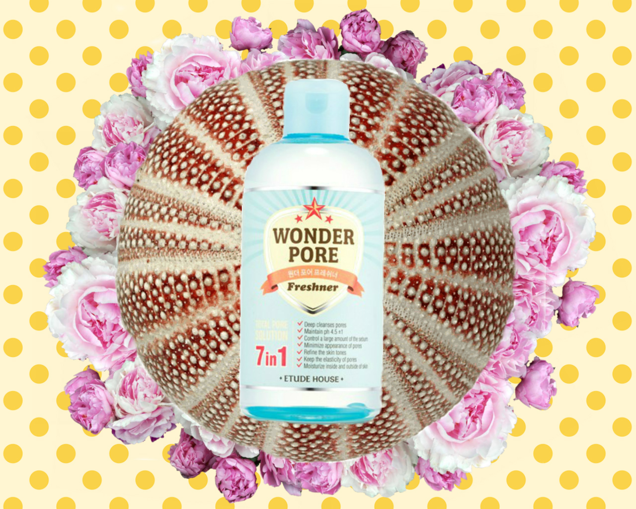 Review Etude House Wonder Pore Freshner 500 Ml